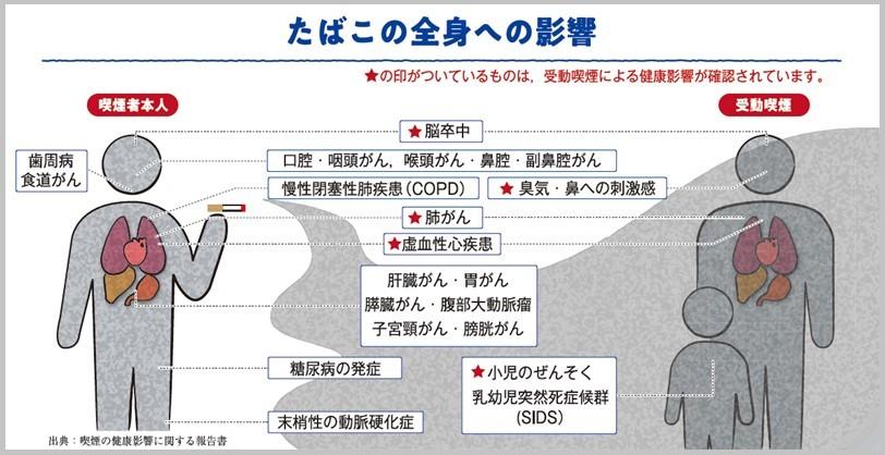 出典:京都市 たばこのはなし【健康コラム】